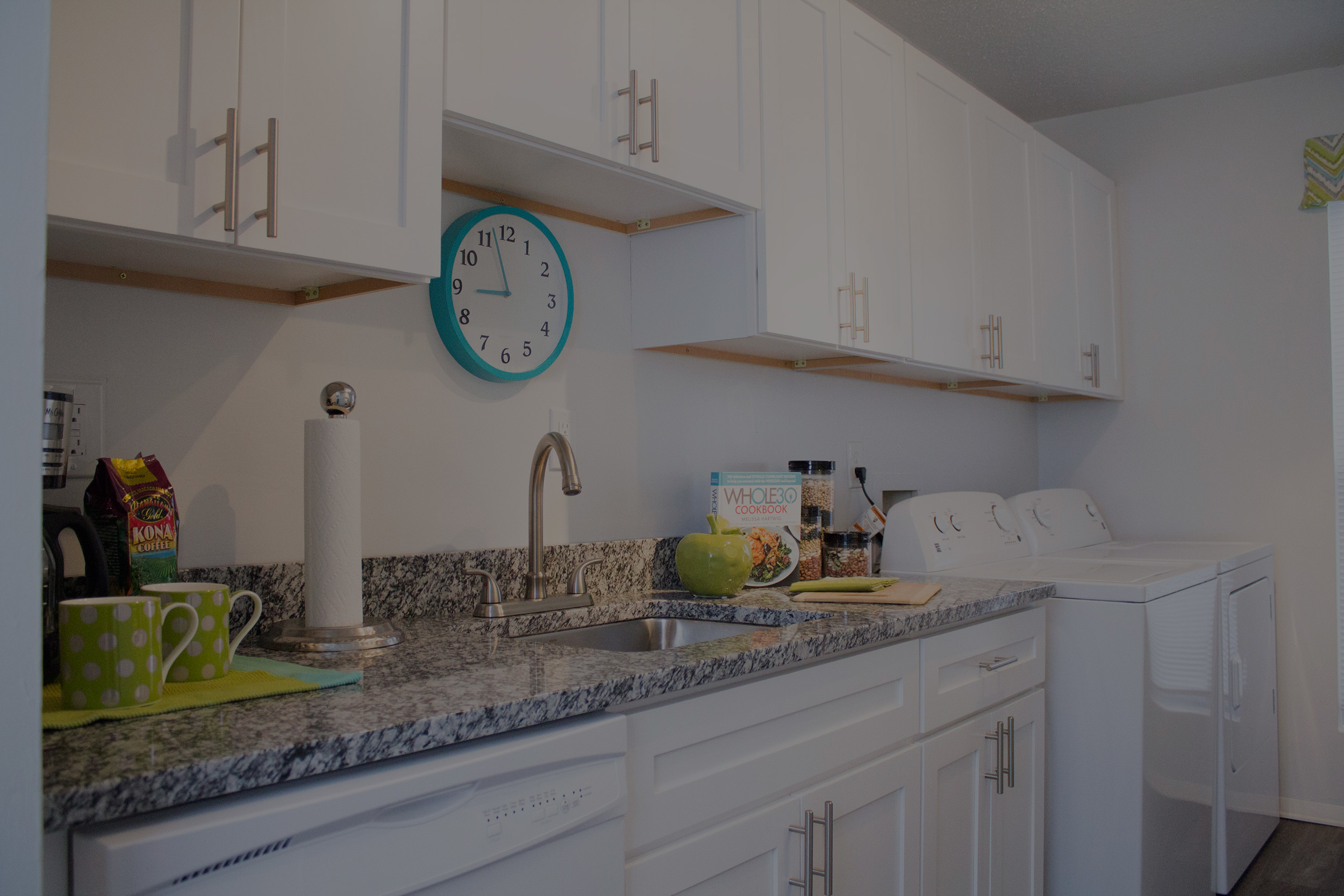 Multi-Family Kitchen Renovations